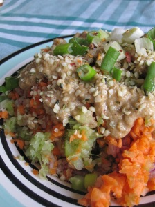 Ally Quick Salad