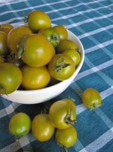 Abundance of Heirloom Cherry Tomatoes