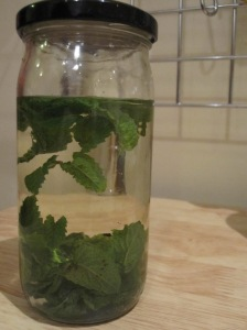 Sake Mint Infusion